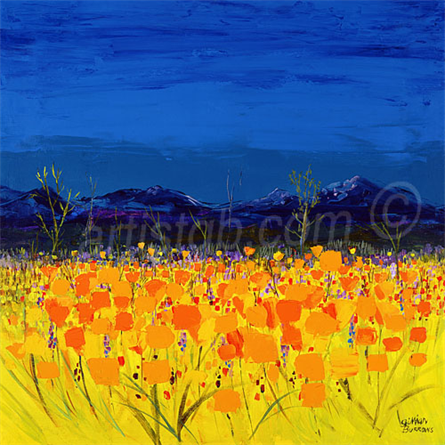 californian-poppies_30738225